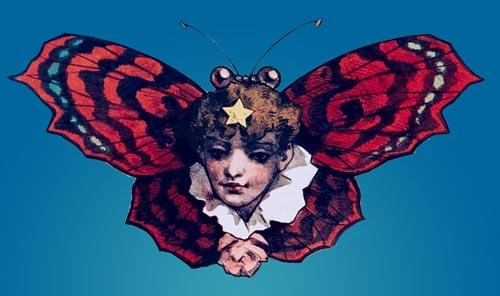 butterflyladyhead
